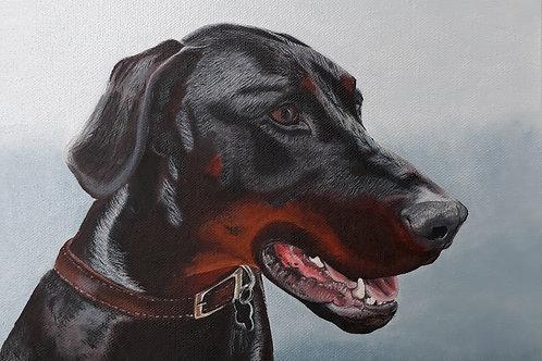 Doberman painting A3 print