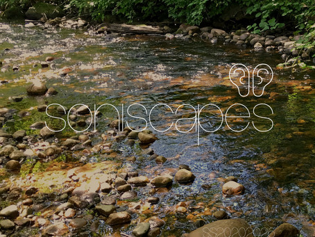 Ambisonic Creek Soundscape in North Vancouver Canada