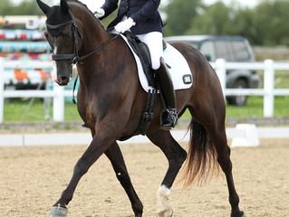 Sponsored Rider, Lisa Hopkins, Regional Success