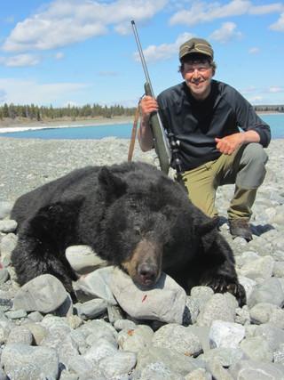 Boar Black Bear