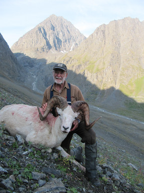 Steve Hornady with his hard earned Chugach ram. Steve is three months shy of 70 years old and got this 40 inch beauty for a early birthday present. 40 x 38 3/8 x 13 2/8.  B&C green score 158 3/8. 11 years old.