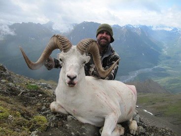 Bob Parker with his beautiful opening day ram from unit 13D. 39 1/8 x 39 0/8 x 13 3/8. B&C green score 159 3/8. Well done Bob.