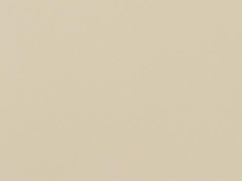AL2377 Opaco Mussel