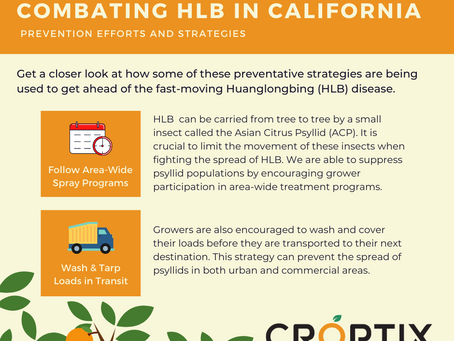 Combating HLB in California - Prevention Efforts and Strategies (continued)