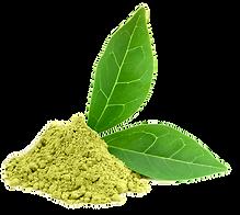 32652-7-green-tea-photos.png