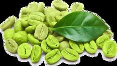 Green Coffee Bean.png