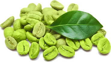 Green Coffee Bean.png