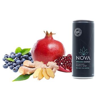 pomegranate-blueberry-ginger(1).png