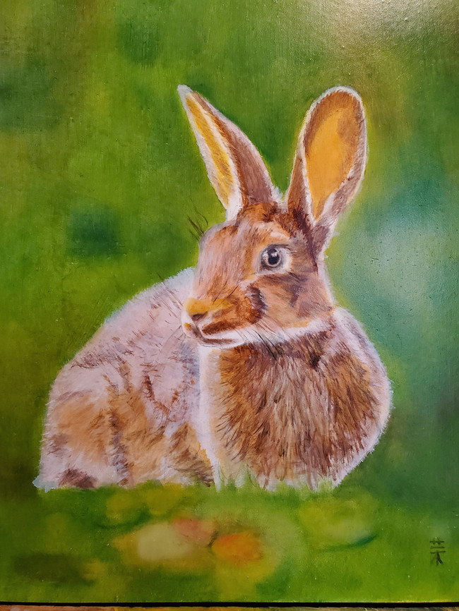 Barney Rabbit
