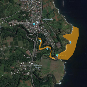 Pāpa'ikou Water Quality Warning for May 17th, 2021