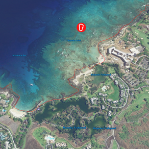 Waikoloa Information Update for February 13th, 2021
