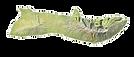 island_icon_molokai.png