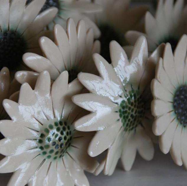 Cole Ceramics- Sandra Cole