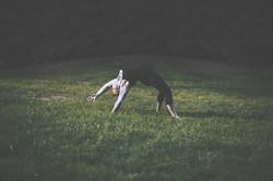 photo by Sara Czernikowski