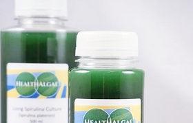 HealthAlgae-Spirulina-platensis-starter-