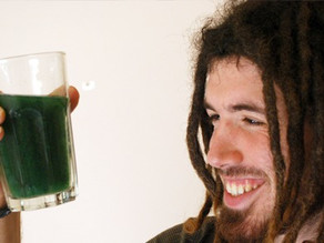 Welcome to the world of Spirulina!
