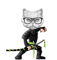 Ninja_Vector_Character_Preview.png