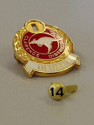 Annual Pin