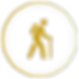 actividades_icon.png