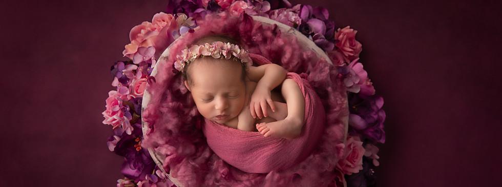 Hills District Newborn Photographer