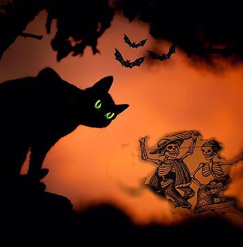 Cat art.jpg