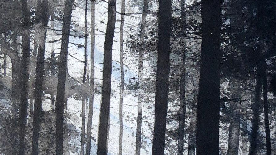 Filtered light forest