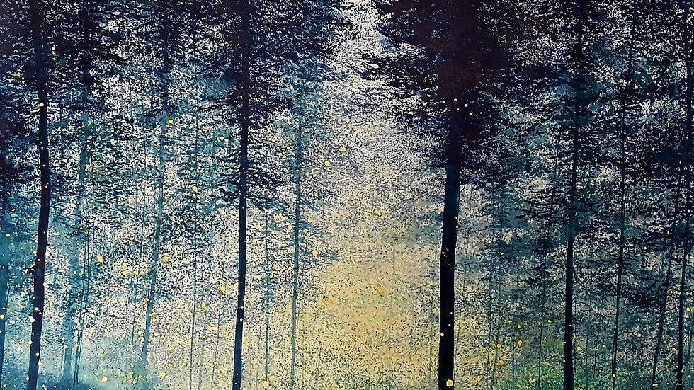 Indigo forest bioluminescence