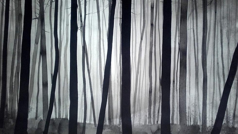 Forest light horizon