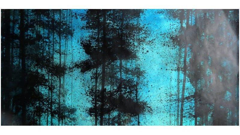 Aquamarine light in the woods