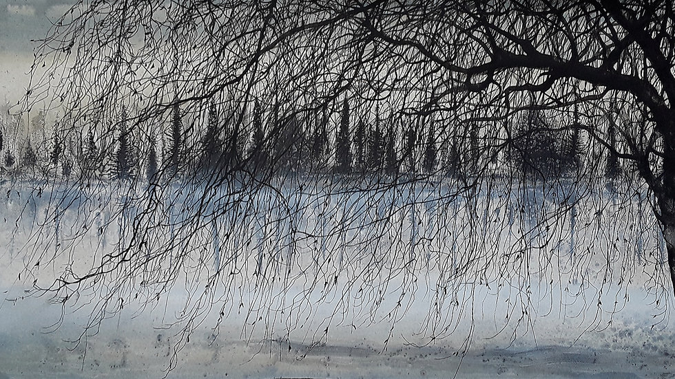 Wintry willow shore