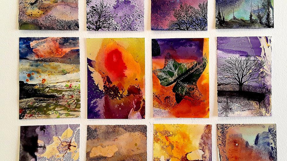 12 series - Winter dusk ladybirds