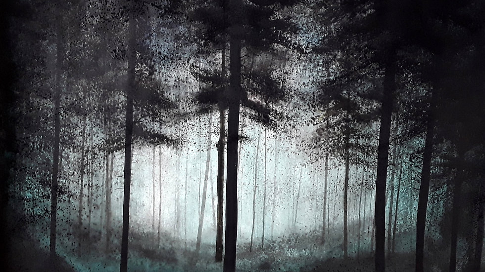 Black forest, dream made of water