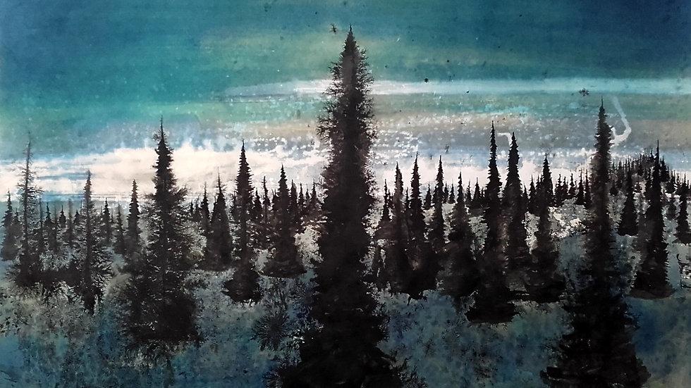 Northern horizon Aurora glimpses