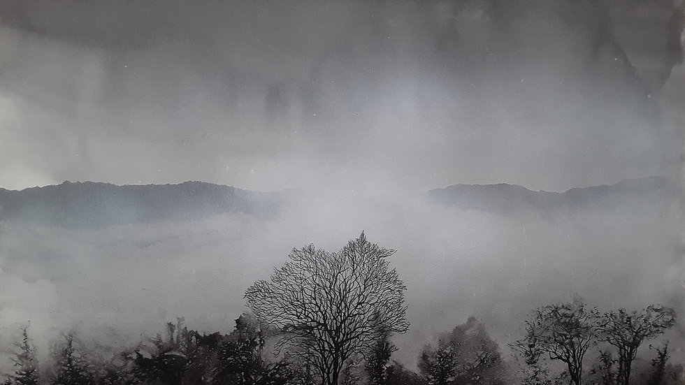 Winter mists panorama
