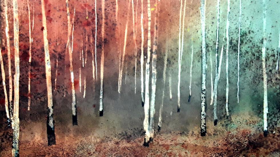 Winter birch trees horizon
