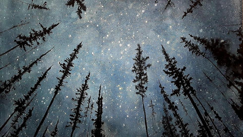 Under the wonder of distant stars