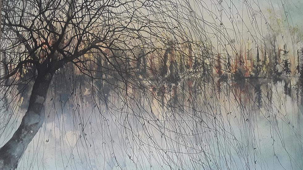 Willow autumn shore