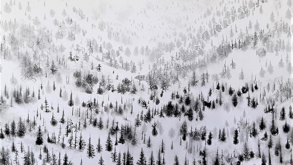 Snowscape, ascending path