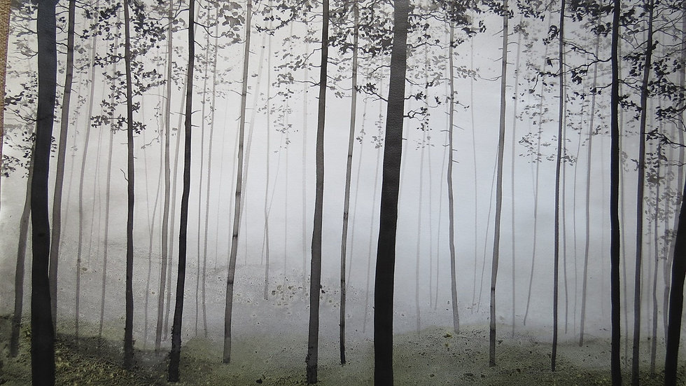 Mist and moss