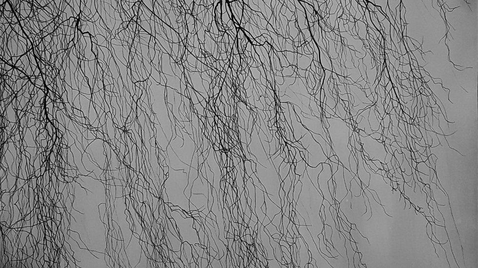 Twigs filigree