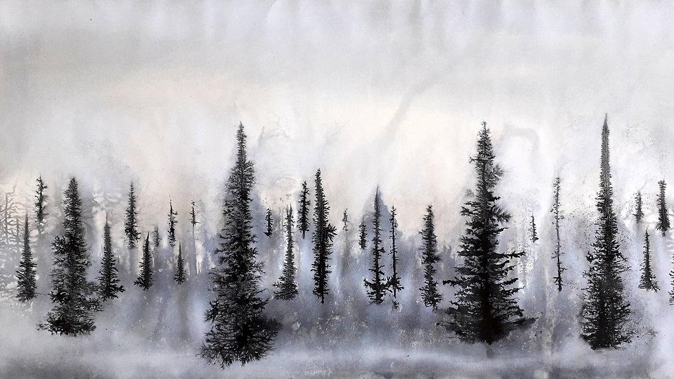 Fog horizon