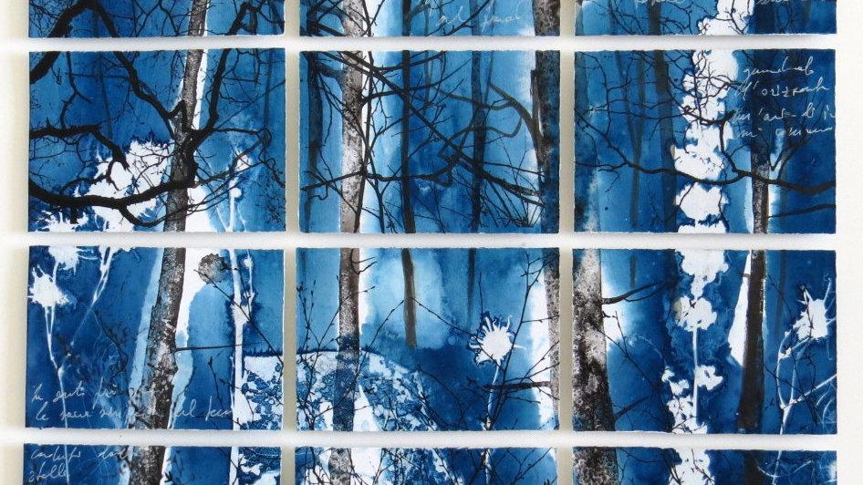 12 series - Icy wood
