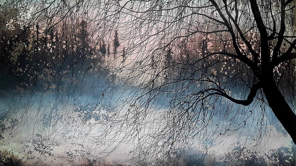 Willow winter dawn