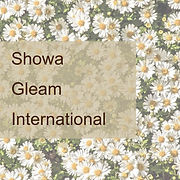 Showa Gleam_International.jpg