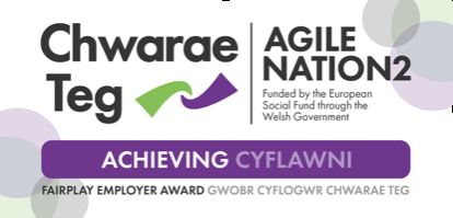 SMR UK become a holder of the Achieving Level of Chwarae Teg's Fair Player Award©.