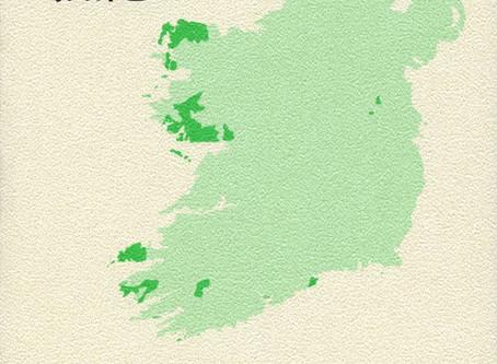 嶋田珠巳著 『英語という選択—アイルランドの今』 これは日本の近未来の姿かもしれない