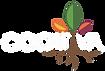 COOLtiva-logo color.png