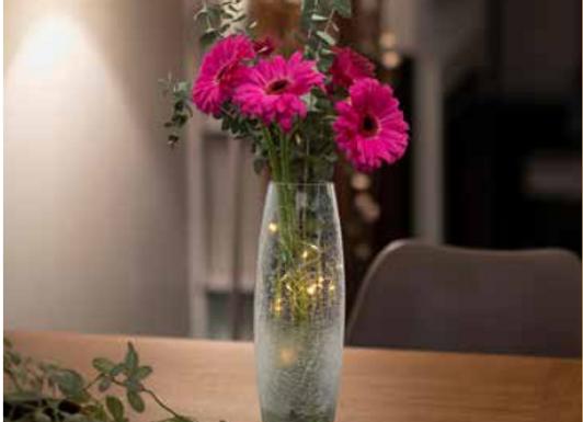 Faerie Vase
