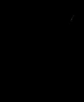 Schematische Zeichnung einer Goldwaschrinne
