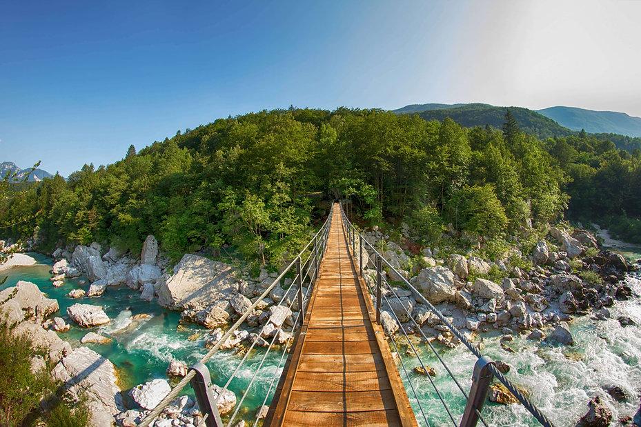 Blick über abenteuerliche Hängebrücke in einen Wald